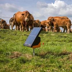 Electrificateur/poste de clôture Gallagher solaire S200 2 piles incluses (12V - 2,0 J) Electrificateurs énergie solaire