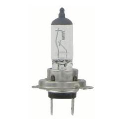 Ampoule H7 12V 55W Ampoules