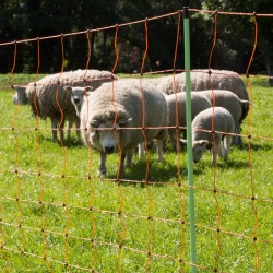 Filet moutons, pointe double, 90cm, 50m Filets clôtures électriques