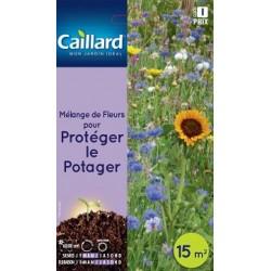 Graines mélange de fleurs pour protéger le potager Caillard Fleurs