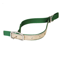 Collier mouton nylon vert Colliers