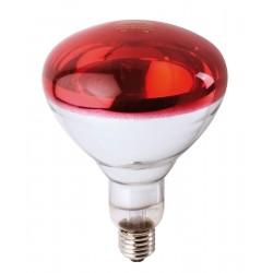Ampoule Philips IR à vis rouge 250W Lampes chauffantes