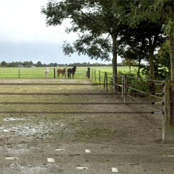 Kit Barrière 4 Rubans 40mm terra, 6m Portes de clôtures