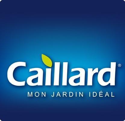 Graines Caillard
